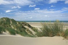 Dunes and golden sands at Ynyslas