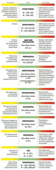 О чем расскажет анализ крови - Новости Украины - From-UA