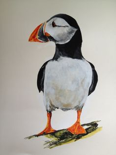 Irish shore bird - Puffin. Painting by Tony O'Connor whitetreestudio.ie