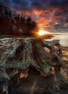 Sunset drifter by Carlos Rojas. Amazing Sunsets, Amazing Nature, Hawaiian Sunset, Dusk Till Dawn, Wonderful Picture, Alaska, Wallpaper S, Nature Photography, Sunrise