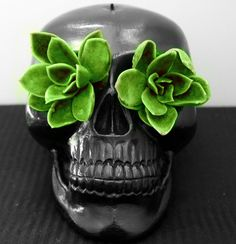Uhm-don't click to go to the page.  I just like this succulents in the skull eyes planter idea.