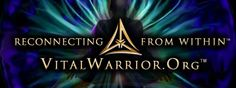vital warrior: VitalWarrior.org is a non profit organization and a system of non-pharmaceutical rebalancing designed by retired Navy SEAL Mikal A. Vega to alleviate the detrimental effects of acute stress in its clients.