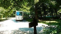 Parcul National Plitvice, o comoara naturala a Croatiei.  Vezi mai multe poze pe www.ghiduri-turistice.info Park