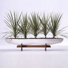 Peanut Planter | Museum of California Design