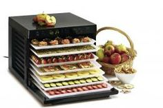 loving it: Sedona Raw Food Dehydrator