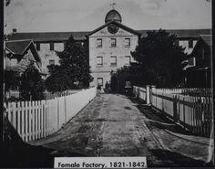 Female Factory Old Photos, Vintage Photos, Asylum, South Wales, Heritage Site, Family History, Genealogy, Sydney, Vietnam