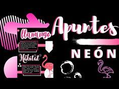 Apunte Neón en Word// Fernanda🌺✨💜 - YouTube College Notes, School Notes, Cute Arrow, V Words, Bullet Journal School, Pretty Notes, Watercolor Wallpaper, Senior Class Shirts, Designs To Draw