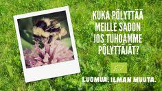 Neonikotinoidit ovat turvallisuudeltaan yksi kyseenalaisin torjunta-aineryhmä http://mttelo.mtt.fi/neonikotinoidien-vaikutusta-mehilaisiin-tutkitaan