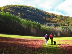 Travel | Massachusetts | Hiking | The Outdoors | Nature | Trails | State Parks | Adventure