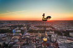 Rīgas gailis