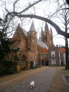 Prinsenhof of Delft.