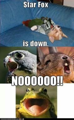 Funny pictures about Star Fox is down. Oh, and cool pics about Star Fox is down. Also, Star Fox is down photos. Video Game Memes, Video Games Funny, Funny Games, 90s Games, Geeks, Animal Captions, Funny Captions, Gaming Memes, Memes Humor