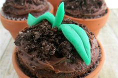 When Spring rolls around nothing gets me more excited then gardening and getting my hands dirty. So today's recipe is inspired by dirt and adorable plants.These Spring Sprout Cupcakes are the perfect way to welcome Spring and satisfy your sweet tooth! Spring is the time when flowers are blooming and everyone is getting their yards and gardens ready for planting. I personally love Spring because it always brings color back into the world. I also love when it warms up from the freezing cold…