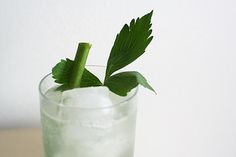 Lovage Syrup
