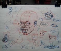Head construction demo putting it all together #art #head #construction #features #skull #drawing #figure #sketch #artschool #la by ramon.alex.hurtado