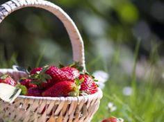 Garten im Mai: Den Sommer vorbereiten - seniorbook