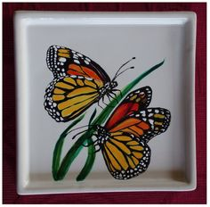 Monarch butterflies by Agnieszka Sokołowska. Hand painted on porcelain. All my porcelains are painted with Talens Decorfin Porcelain and baked in high temperature, so they are pretty durable. #xantosia #handpainted #reczniemalowane #art #porcelart #porcelainpainter #ceramic #butterfly #motyl #monarch #insect #milkweed #nature #porcelain #wanderer #pomarańczowy #orange #tableware
