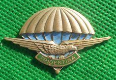 distintivo alpino aviazione fregio cappello alpini brevetto paracadutista Italian Army, World War Ii, Badges, Wings, World, Climbing, War, World War Two, Name Badges