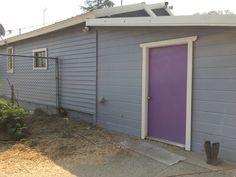 2nd North new purple door, love it!