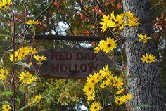 Red Oak Hollow