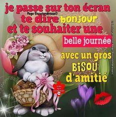 Teddy Bear, Messages, Animals, Facebook, Sunday Humor, Humor Birthday, Animales, Animaux, Teddy Bears