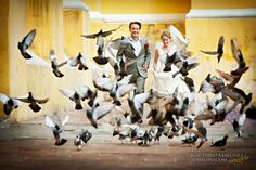 Wedding Photography Ideas : Beautiful #wedding photo! #birds