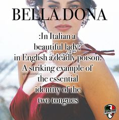 Shop quality Italian pride products that connect you with your heritage. Italian Women Quotes, Italian Memes, Italian Side, Italian Girls, Woman Quotes, Life Quotes, Mob Quotes, Italian Quote Tattoos, Italian Girl Problems
