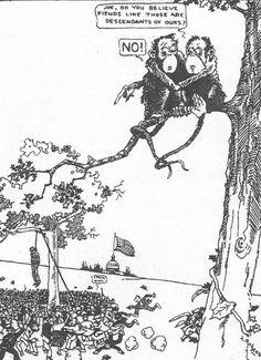 Political cartoon describing the Scopes Monkey Trial