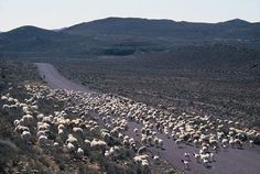 The Great Karoo is South Africas heartland a massive arid part of the country that spans more than 400 000 square kilometres and 50 towns. Beautiful Roads, Beautiful Places, South Afrika, Africa People, Big Sky Country, Throughout The World, My Land, Heartland, Continents