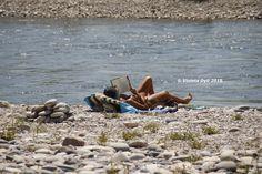 Lettrice che legge in riva del fiume Ticino
