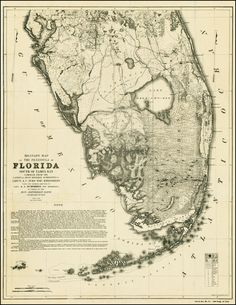 Military Map of The Peninsula of Florida South of Tampa Bay . . .1856 - Barry Lawrence Ruderman Antique Maps Inc.