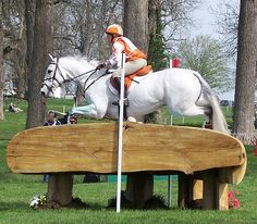Rolex Kentucky 3 Day Event 2007 - Cross Country by Kelsey Sherman, via Flickr ||  Sharon L. White aboard Ronaldo | That's not wide or anything ;) || grey xcountry | big jump