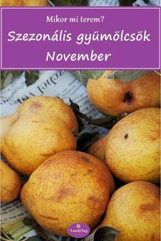 Mikor mi terem? Szezonális gyümölcsök novemberben November, Grapefruit, Pear, Potatoes, Vegetables, Food, November Born, Potato, Essen