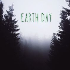 Earth Day flipagram created by Sam Ciurdar featuring the song Stay Alive by Jose Gonzalez.