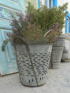 4 Rustic Olive and grape bucket basket by Eskiden on Etsy, $159.00