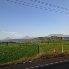 View of mt.sindoro sumbing java indonesia on way to alas roban