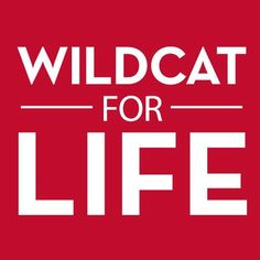 ARIZONA Wildcat for Life!!