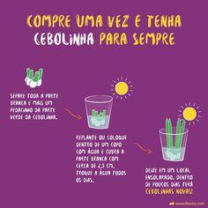 Eco Garden, Home Vegetable Garden, Edible Garden, Grow Home, Comment Planter, Little Plants, Hacks, Green Life, Green Plants
