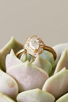 39 best vintage engagement rings for romantic look oh so perfect Yellow Engagement Rings, Antique Engagement Rings, Romantic Look, Moissanite, Halo Diamond, Champagne, Pear, Anna Sheffield, Perfect Proposal