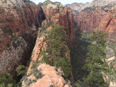 Angels Landing Trail, Zion National Park. Watch the whole episode here #monicagoes