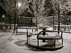 Natura,my Winter