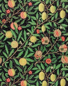 Fruit pattern (1862) by William Morris. Original from The Smithsonian Institution. Digitally enhanced by rawpixel. | free image by rawpixel.com William Morris Patterns, William Morris Art, Fruit Pattern, Pattern Art, Surface Pattern, Surface Design, Pattern Illustration, Botanical Illustration, Textiles