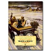 "Found it at Wayfair - ""Black & White Whisky"" Vintage Advertisement on Wrapped Canvas"