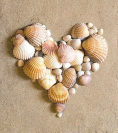 heart made of shells.  put the rings on one, or have the bride and groom hands on the heart!