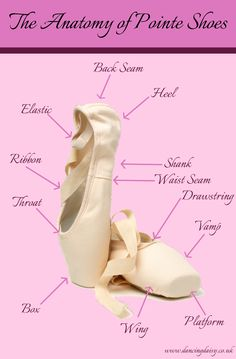 Learning to dance 'en pointe' takes incredible strength from so many parts of your body and the bones in your feet need to be fully developed, too. Ballet Abs, Ballet Moves, Ballet Dancers, Dancing Daisy, Ballerina Dancing, Colored Pointe Shoes, Pointe Shoes Drawing, Ballet Terms, Dance Terms