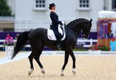 Learn the Basic Rules of the Equestrian Olympic Competitions: Anky Van Grunsven of Netherlands riding Salinero competes in the Team Dressage Grand Prix Special on Day 11 of the London 2012 Olympic Games.