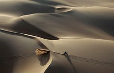 A competitor rides in the dunes during the sixth stage of the Dakar Rally 2011 from Iquique to Arica January 7, 2011. (REUTERS/Eric Gaillard)