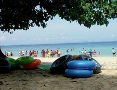 Boat Ride and Snorkeling in the Elephant Beach | Padhaaro