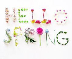 É primavera..... Te amo.. Meu amorrrrrrrrrrrrr 🌸🌹🌷🌺💐
