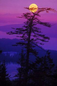 Moon setting in San Juan Islands, Washington - ©Kurt Thorson